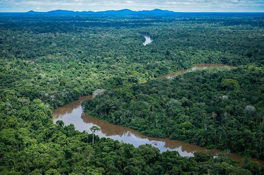 Política ambiental do governo prejudica o Brasil, avaliam senadores