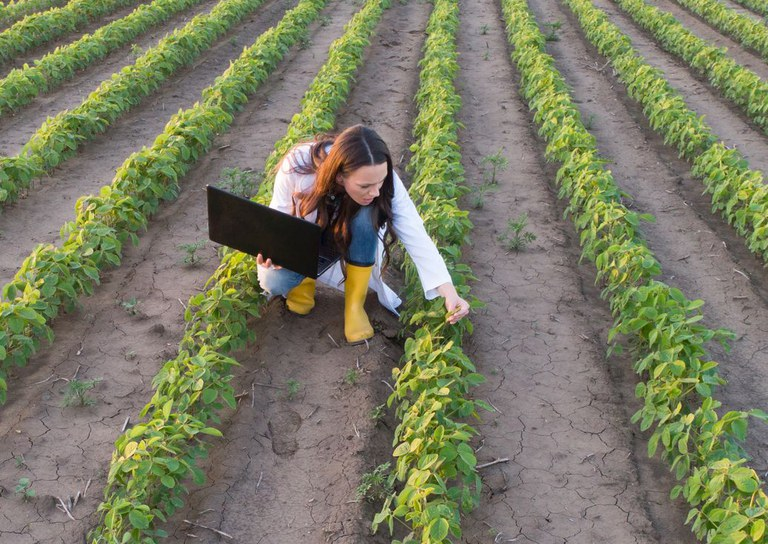 Inscrições para Programa de Residência Profissional Agrícola terminam na próxima semana