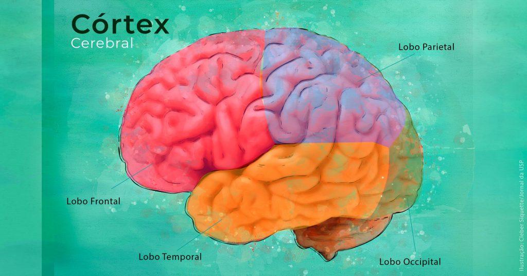 Identificadas alterações no cérebro comuns a seis tipos de transtornos psiquiátricos