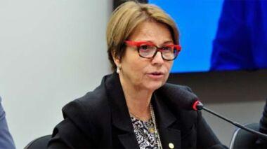 Comissão pede informações sobre pecuária no Pantanal a ministra