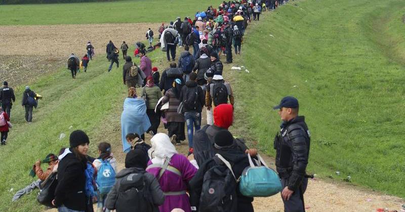 Refugiados sírios enfrentaram legislação obsoleta e recepção precária na chegada ao Brasil