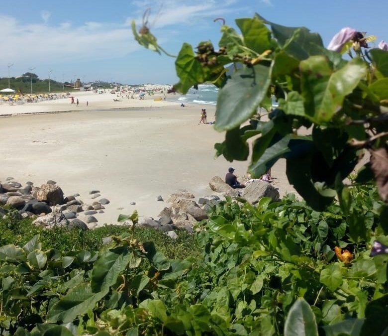 Praia do Santinho é um espetáculo de beleza natural em Florianópolis