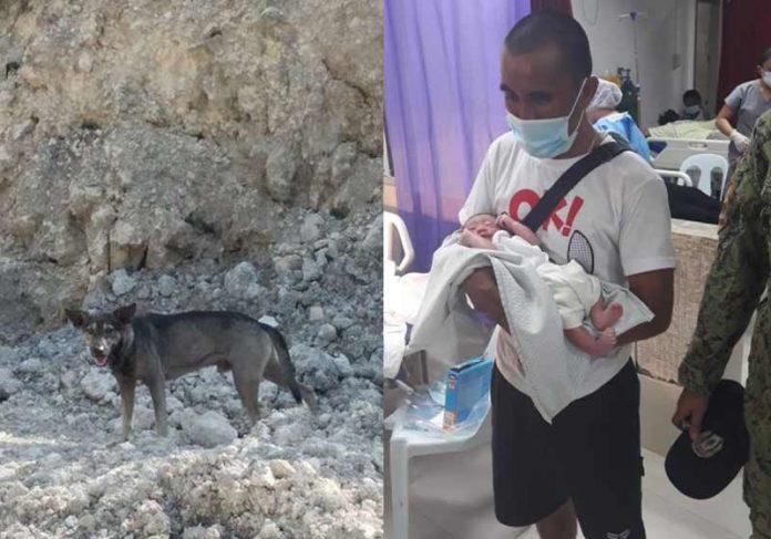 Cachorro avisa e motociclista salva bebê abandonado perto de lixão