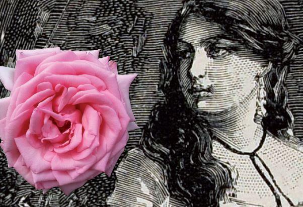 Decreto estadual estabelece 2021 como o ano comemorativo do bicentenário de nascimento de Anita Garibaldi