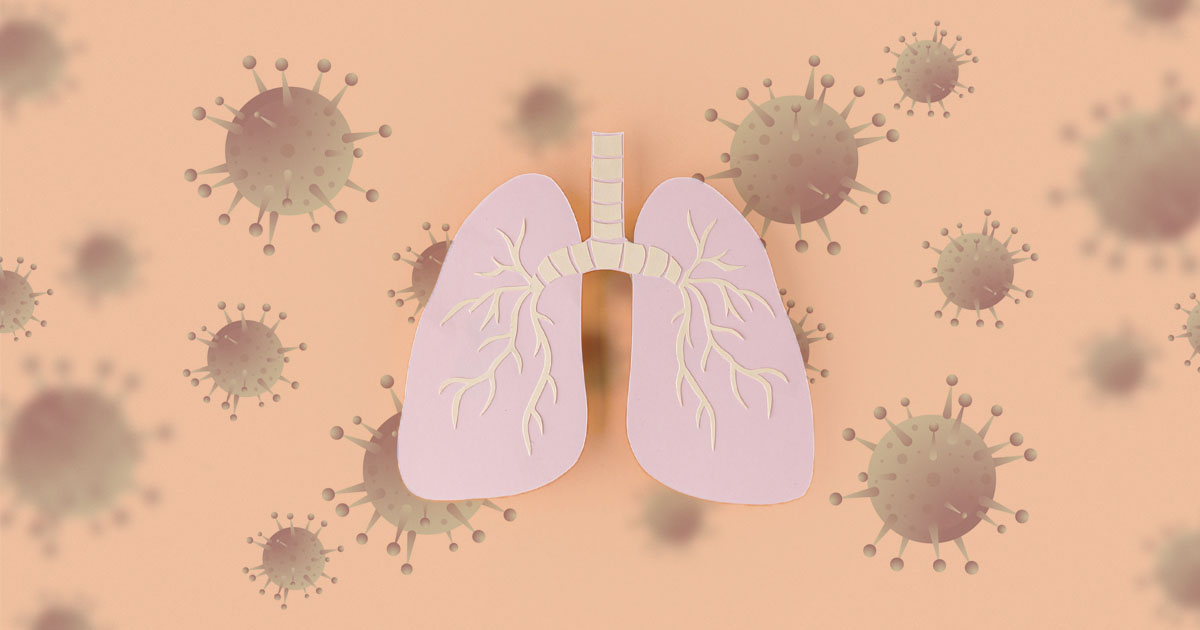 Sars-cov-2 inibe remoção de células mortas pelo sistema imune, favorecendo o dano pulmonar