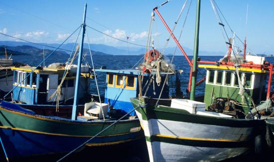 Tribunal mantém condenação por pesca ilegal na Reserva Biológica Marinha do Arvoredo em SC