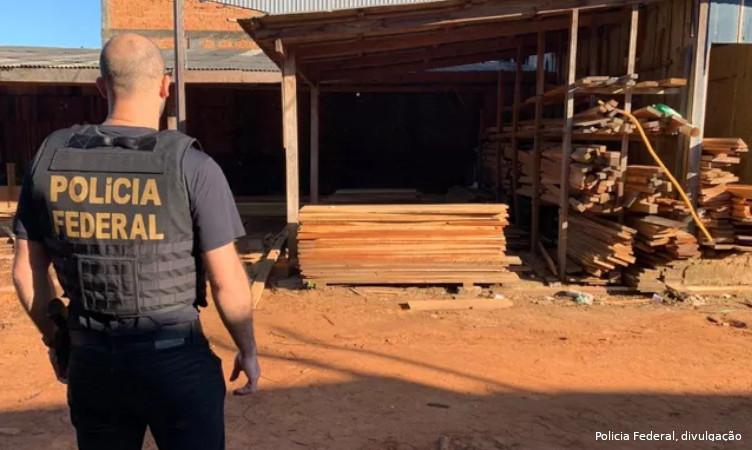 Polícia Federal mantém cooperação com EUA e planeja novas operações contra crimes ambientais