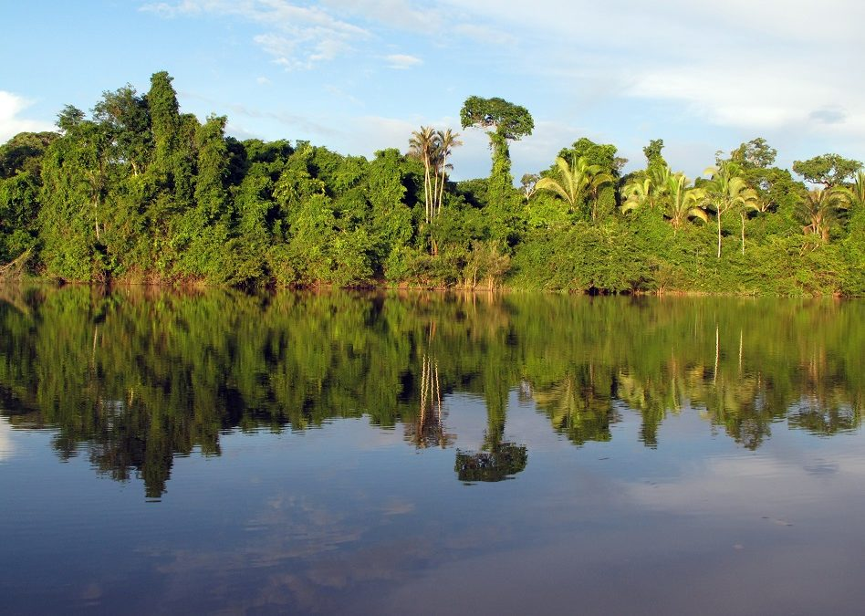 O maior projeto de usina hidrelétrica do governo federal na Amazônia é barrado pelo Ibama