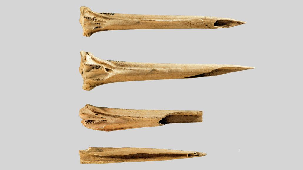 Conheça as ferramentas de tatuagem mais antigas já encontradas