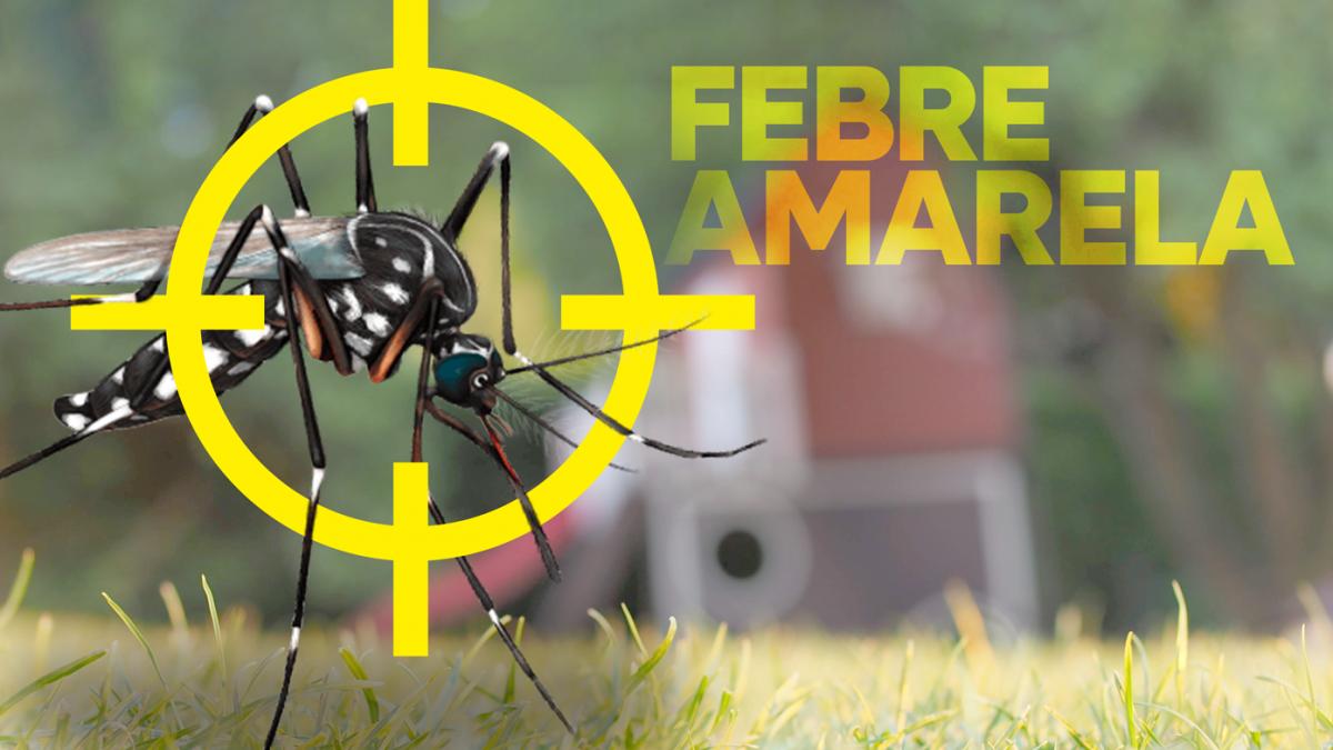 São José intensifica vacinação contra a Febre Amarela
