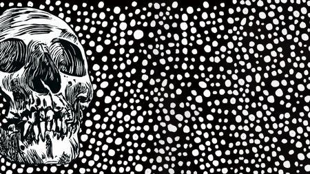 Um cientista racista construiu uma coleção de crânios humanos. Ainda devemos estudá-los?
