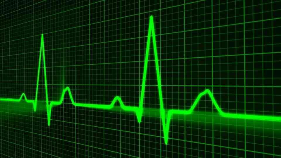 Pesquisadora da UFSC identifica biomarcadores capazes de denunciar problemas cardiovasculares