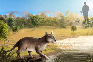 Pesquisadores identificam nova espécie de mamífero pré-histórico encontrado na Bacia de Itaboraí